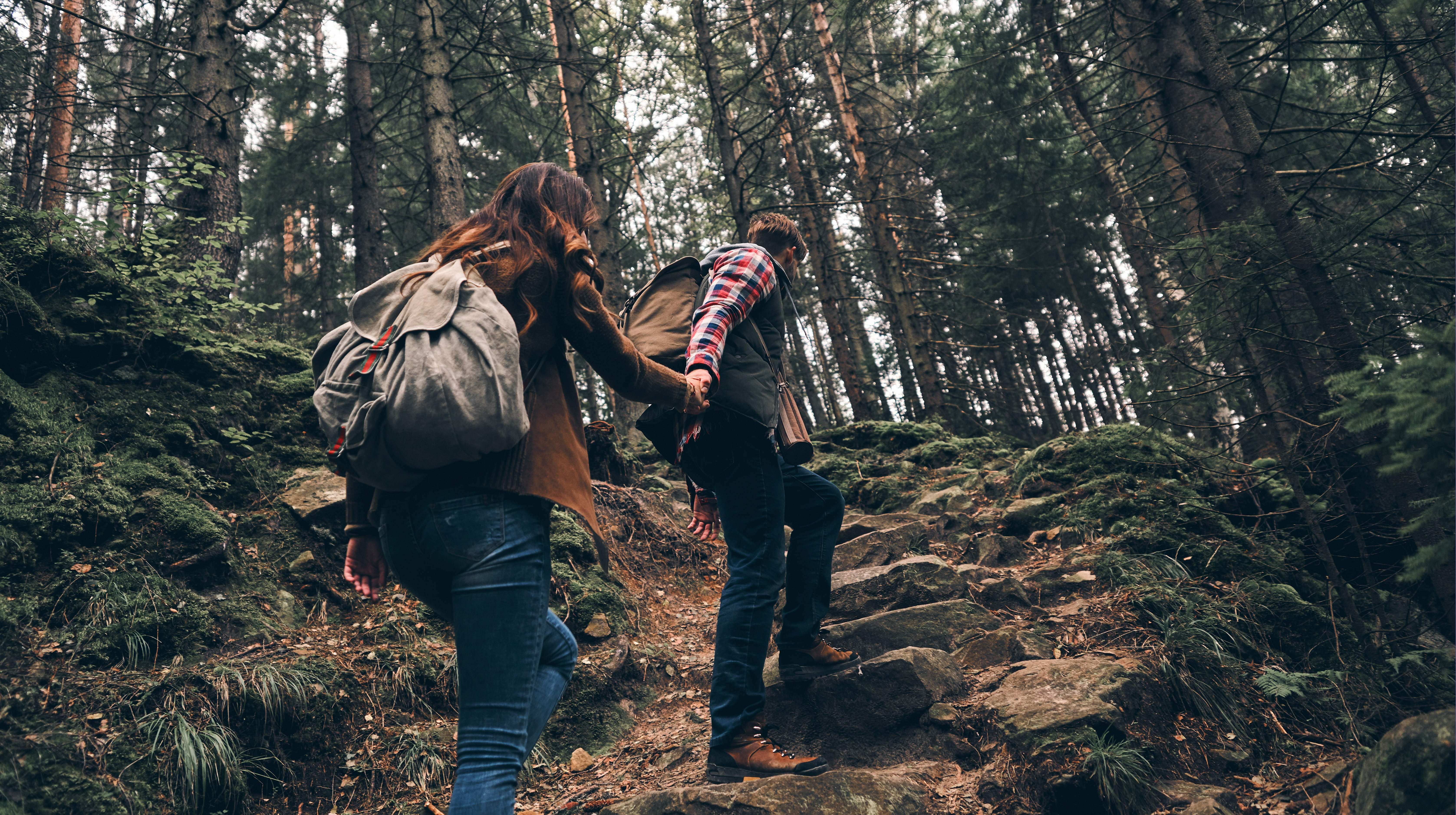 Rear view of modern young couple holding hands and moving up while hiking together in the woods